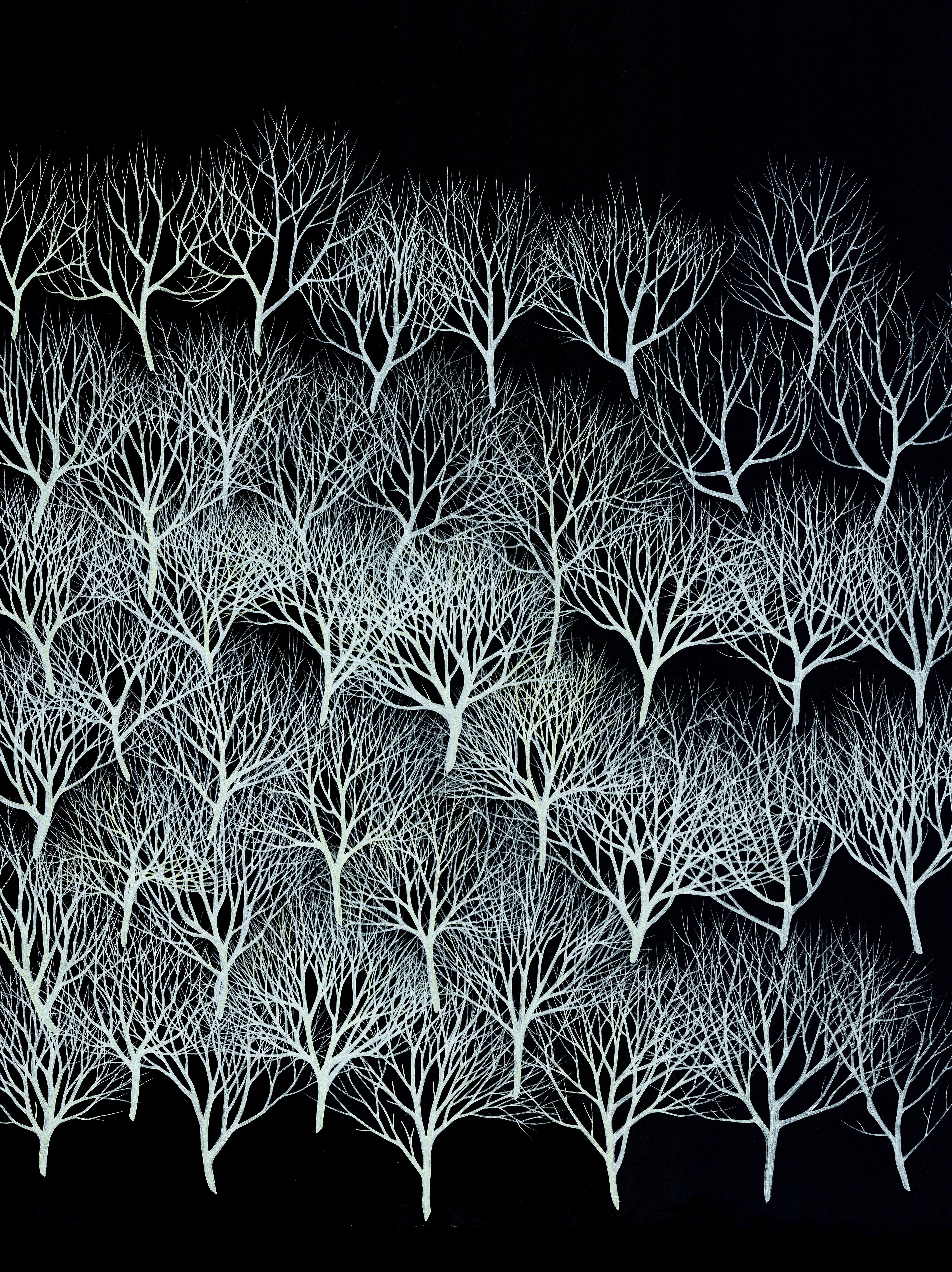 neuroforest