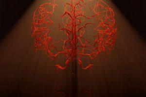 Marwan Abdellah - Illuminating The Vascular Network - EPFL
