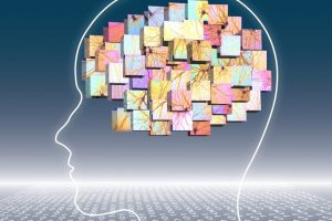 Natalia Goriounova - The building blocks of the human mind - Vrije Universiteit