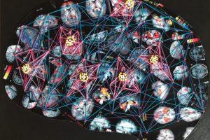 Kathleen A. Sluka - Pain Brain - University of Iowa