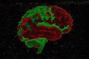 Ana Lopez Ramirez - Lighting up protein degradation in neurons - University of Cambridge
