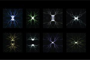 Andrea Sieber - University of Bern - Shooting stars enlighten intrathalamic plasticity
